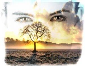Plante a árvore da vida dentro de você.